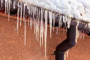 cleaning your gutters is crucial for preventing issues in your roof before winter